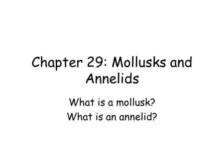 Chapter 29: Mollusks and Annelids What is a mollusk? What is an annelid?