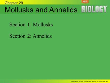 Mollusks and Annelids Section 1: Mollusks Section 2: Annelids
