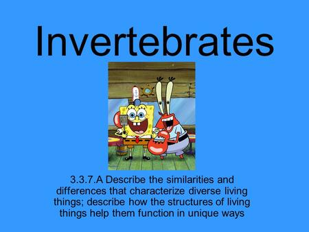 Invertebrates 3.3.7.A Describe the similarities and differences that characterize diverse living things; describe how the structures of living things help.