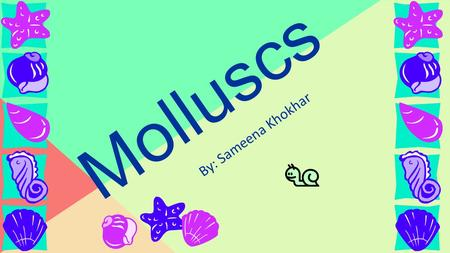 "Molluscs By: Sameena Khokhar. The term mollusc means ""soft."" A mollusc is a diverse animal and is a member of the phylum Mollusca group. Around eighty."