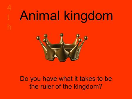 Animal kingdom Do you have what it takes to be the ruler of the kingdom? 4th4th.