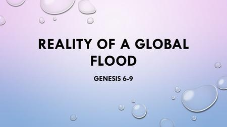 Reality of a global flood