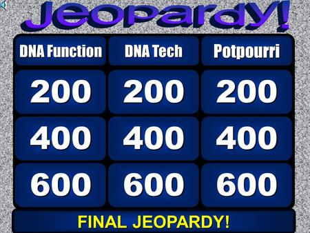 600 400 200 DNA Function DNA Tech 600 400 200 Potpourri FINAL JEOPARDY! FINAL JEOPARDY!
