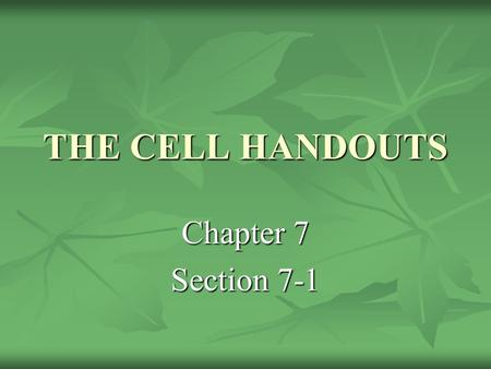 THE CELL HANDOUTS Chapter 7 Section 7-1. What is the structure that makes up every living thing? The cell The cell.