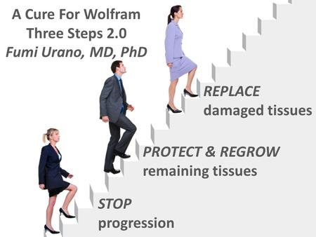 STOP progression PROTECT & REGROW remaining tissues REPLACE damaged tissues A Cure For Wolfram Three Steps 2.0 Fumi Urano, MD, PhD.