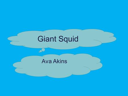 Giant Squid Ava Akins The Giant Squid are the Largest mollusks in the ocean. Giant Squid have been known to be about 60 feet in total length, but most.