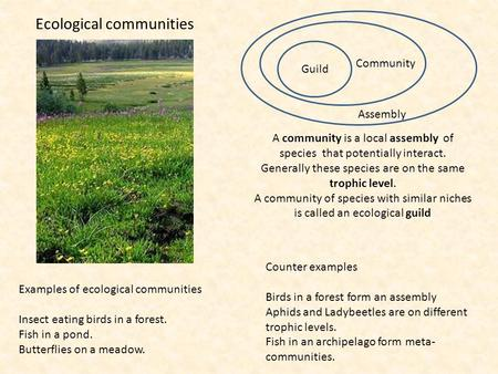 Ecological communities A community is a local assembly of species that potentially interact. Generally these species are on the same trophic level. A community.