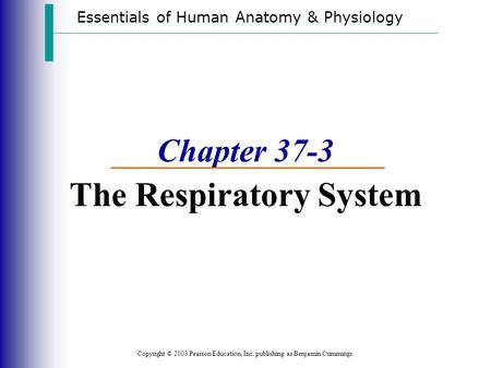 Essentials of Human Anatomy & Physiology Copyright © 2003 Pearson Education, Inc. publishing as Benjamin Cummings Chapter 37-3 The Respiratory System.