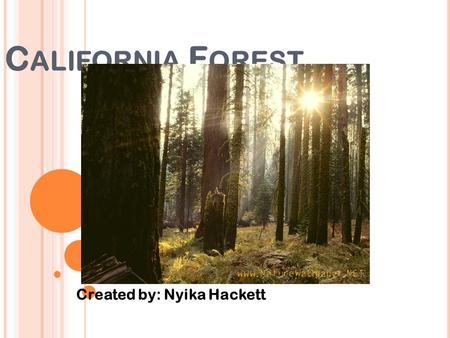 C ALIFORNIA F OREST Created by: Nyika Hackett. C ALIFORNIA F OREST E CONOMIST Q-1: What are the economic benefits of this type of ecosystem to a home.