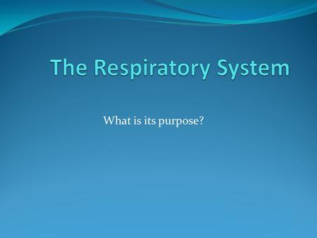 What is its purpose?. RESPIRATORY PRE-TEST 1. The main function of the respiratory system is_____ 2. Name the structures of the respiratory system. 3.