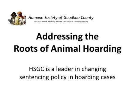 Addressing the Roots of Animal Hoarding HSGC is a leader in changing sentencing policy in hoarding cases.