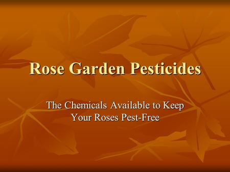 Rose Garden Pesticides The Chemicals Available to Keep Your Roses Pest-Free.