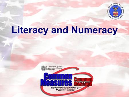 Literacy and Numeracy. 2 Agenda Background Key Variables for Calculating Literacy and Numeracy Rate –Definition of a Youth –Out-of-School –Basic Literacy.