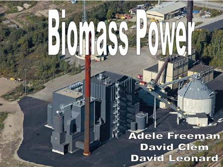 Biomass Power Adele Freeman David Clem David Leonard