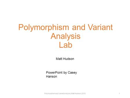 Polymorphism and Variant Analysis Lab