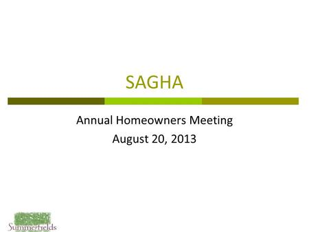 SAGHA Annual Homeowners Meeting August 20, 2013. 2 Agenda  Open Board Positions Resolution  Year in Review  Treasurer's Report  Common Area Items.