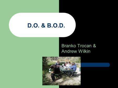 Branko Trocan & Andrew Wilkin D.O. & B.O.D.. Question- How does the D.O level in Rock Creek Compare to that of the lower Snake River?