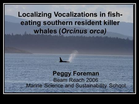 Localizing Vocalizations in fish- eating southern resident killer whales (Orcinus orca) Peggy Foreman Beam Reach 2006 Marine Science and Sustainability.
