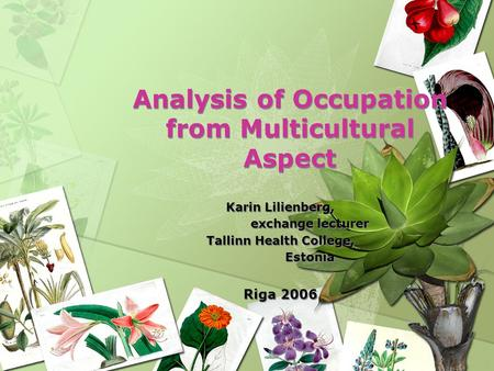 Analysis of Occupation from Multicultural Aspect