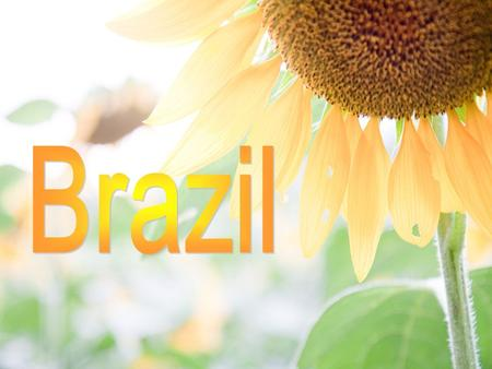 Brazil is the largest country in South America bounded by the Atlantic Ocean. A geographically large country, the terrain includes lowlands, hills and.
