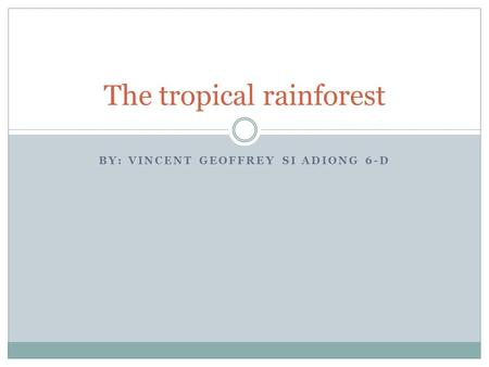 BY: VINCENT GEOFFREY SI ADIONG 6-D The tropical rainforest.