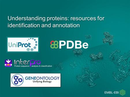 Understanding proteins: resources for identification and annotation.