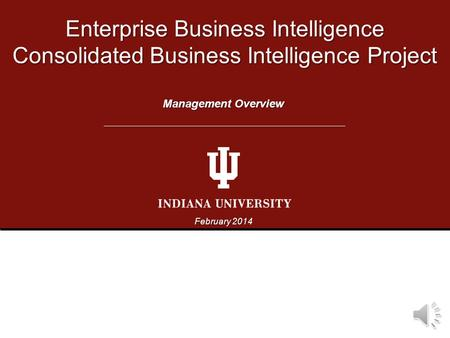 Enterprise Business Intelligence Consolidated Business Intelligence Project February 2014 Management Overview.