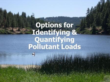 Options for Identifying & Quantifying Pollutant Loads