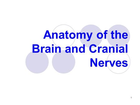 Anatomy of the Brain and Cranial Nerves 1. The Nervous System can be divided in: Central Nervous System (CNS)  Brain and Spinal Cord Peripheral Nervous.