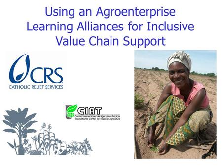 Using an Agroenterprise Learning Alliances for Inclusive Value Chain Support.