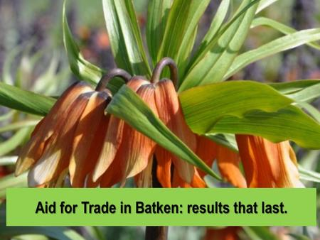 Aid for Trade in Batken: results that last.. Batken Province Batken is a region in the south of Kyrgyzstan, which borders with Uzbekistan in the north.
