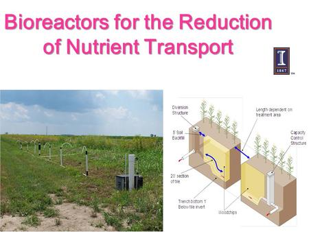 Bioreactors for the Reduction of Nutrient Transport.