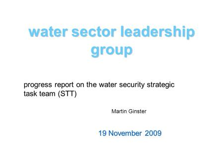 Water sector leadership group 19 November 2009 progress report on the water security strategic task team (STT) Martin Ginster.