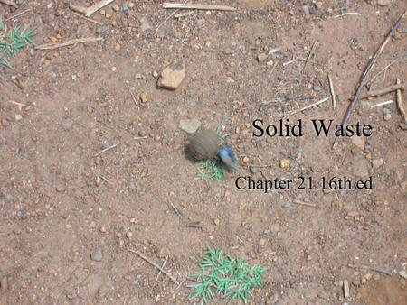 Solid Waste Chapter 21 16th ed. MSW  1.5% of total waste stream  30% of MSW is recycled or composted, 55% landfilled, 15% burned in incinerator  3M.