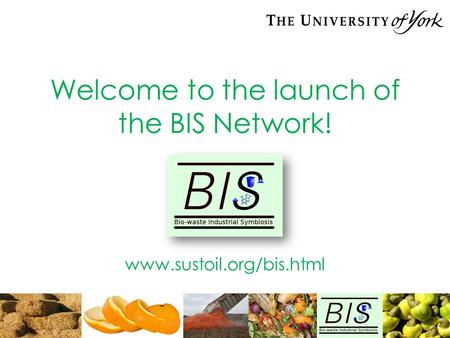 Welcome to the launch of the BIS Network! www.sustoil.org/bis.html.