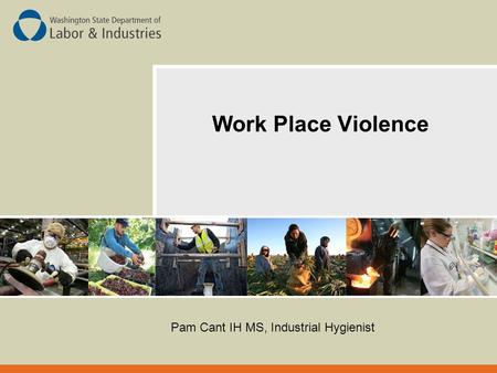 Work Place Violence Pam Cant IH MS, Industrial Hygienist.