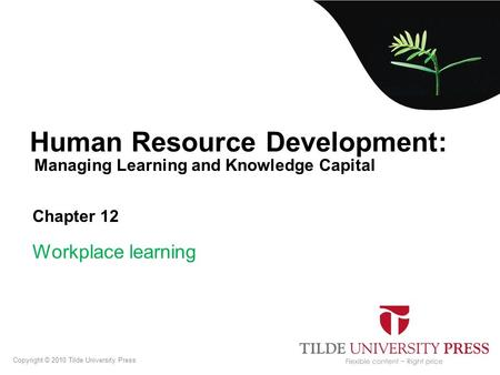 Managing Learning and Knowledge Capital Human Resource Development: Chapter 12 Workplace learning Copyright © 2010 Tilde University Press.