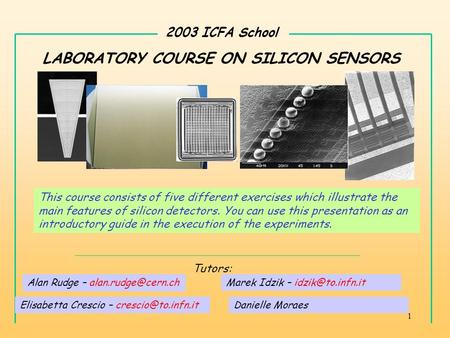 1 2003 ICFA School LABORATORY COURSE ON SILICON SENSORS Elisabetta Crescio – Marek Idzik – Tutors: This course consists.