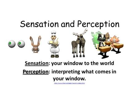 Sensation and Perception Sensation: your window to the world Perception Perception: interpreting what comes in your window.