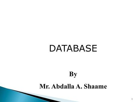 1 DATABASE By Mr. Abdalla A. Shaame.  What is a database?  The main characters of a database system  The basic database design method  The entity-relationship.