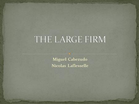 Miguel Cabezudo Nicolas Laflesselle. 1. DEFINITION 2. TYPES OF GROUPING 3. ORGANISATION STRUCTURE 4. EXAMPLES 5. QUESTIONS 6. REFERENCES.