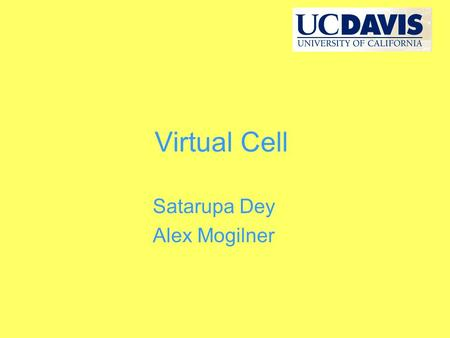Virtual Cell Satarupa Dey Alex Mogilner. What is Virtual cell? The Virtual cell (or Vcell) is a software developed by NRCAM. This software platform has.