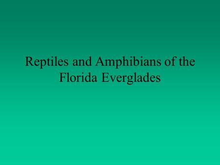 Reptiles and Amphibians of the Florida Everglades.