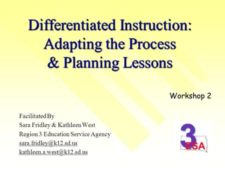 Differentiated Instruction: Adapting the Process & Planning Lessons Facilitated By Sara Fridley & Kathleen West Region 3 Education Service Agency