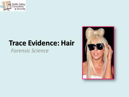 Trace Evidence: Hair Forensic Science. 2 Copyright and Terms of Service Copyright © Texas Education Agency, 2011. These materials are copyrighted © and.