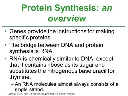 Protein Synthesis: an overview
