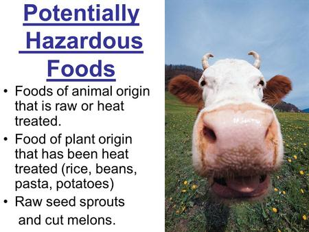 Potentially Hazardous Foods Foods of animal origin that is raw or heat treated. Food of plant origin that has been heat treated (rice, beans, pasta, potatoes)