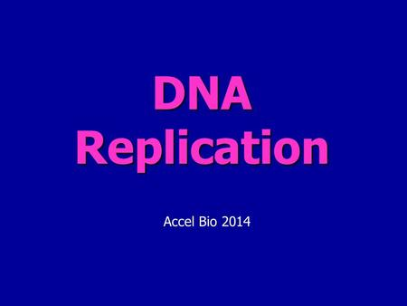 DNA Replication Accel Bio 2014. Overview: What is DNA for? The purpose of DNA is to store the information necessary to allow cells & organisms to function.