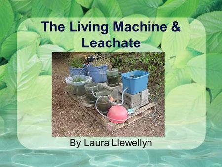 The Living Machine & Leachate