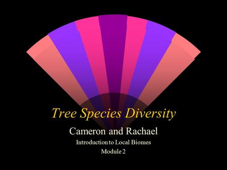 Tree Species Diversity Cameron and Rachael Introduction to Local Biomes Module 2.
